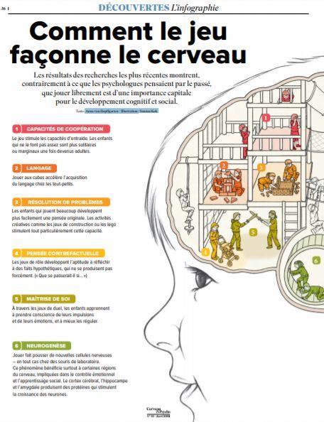 Comment le jeu façonne le cerveau (1)