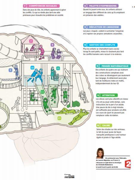 Comment le jeu façonne le cerveau (2)